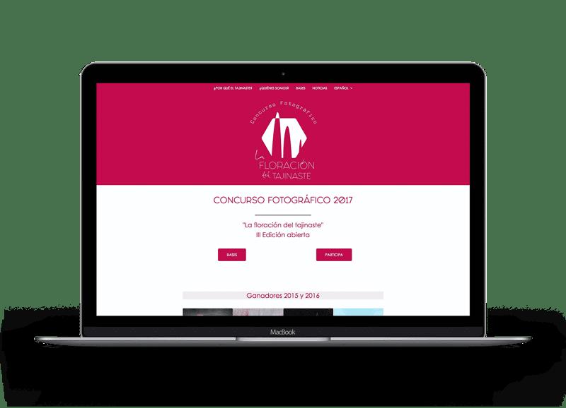 Diseño de páginas Web para fotógrafos 7