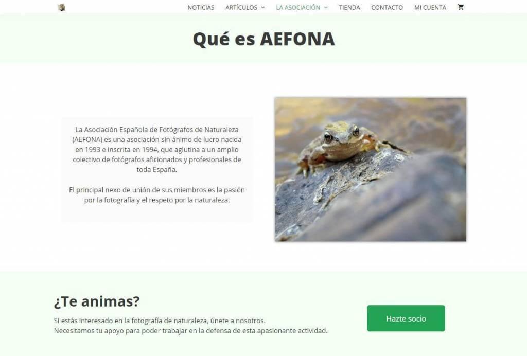 aefona (5)