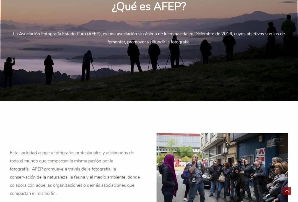 afep (5)
